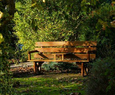 Havebænk: De 14 bedste havebænke til haven